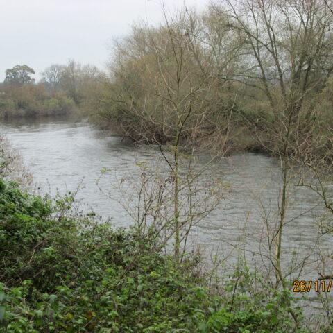 Weirend Fishery – River Wye.