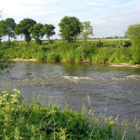 Upper Benhall – River Wye.